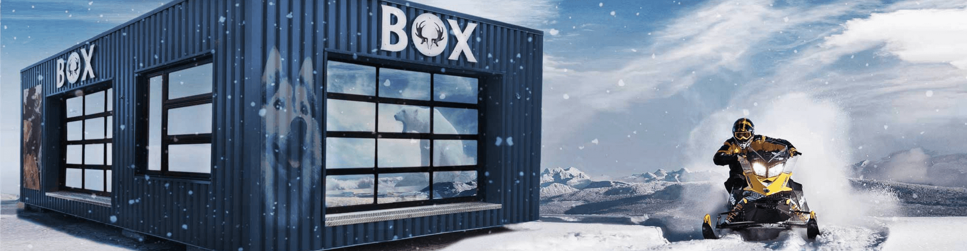coolbox arctique