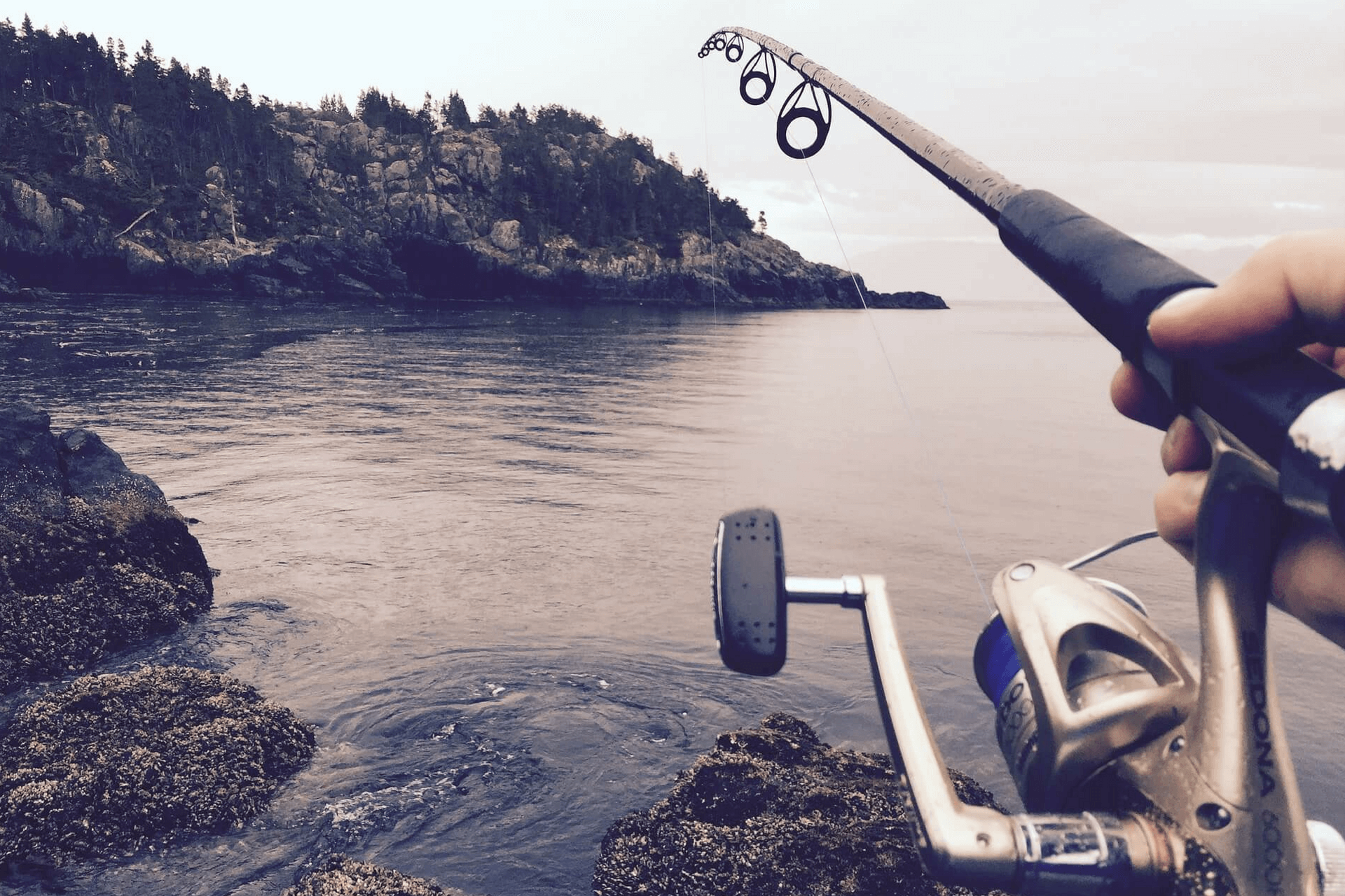 Pêche et plein air